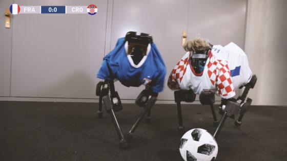 ANYmal Soccer