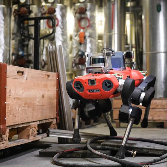 ANYmal C legged robot ML obstacle